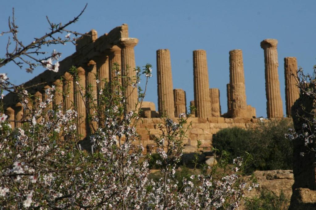 Tour sicilia agrigento