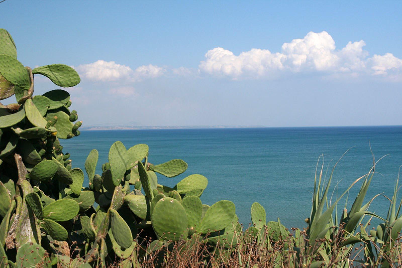 In vacanza con Sicilying per te e la tua famiglia