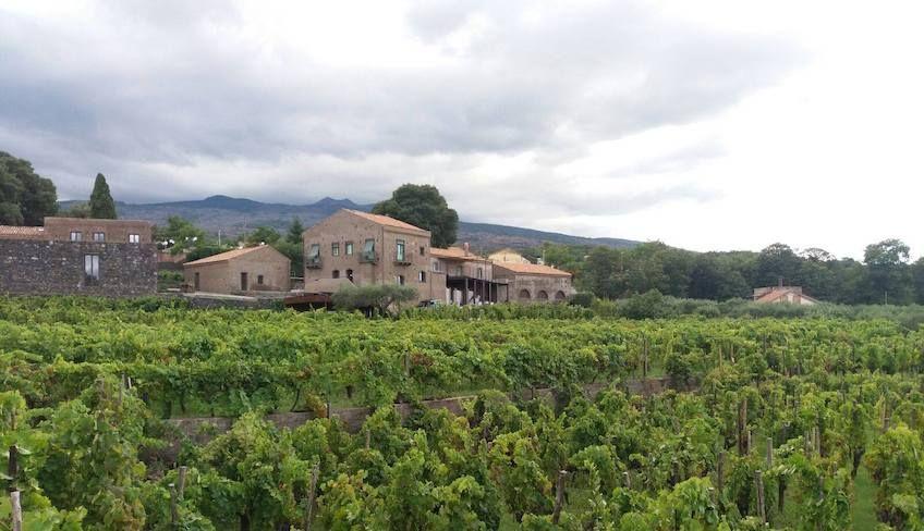 treno dei vini etna - Etna wine tour