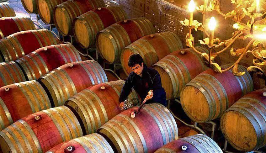 degustazione vini etna - vini etna cantine