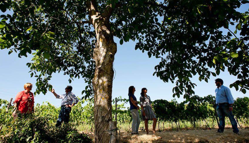 weekend sicilia - fine settimana in sicilia