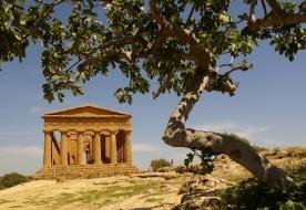 visite Agrigento - tour Agrigento
