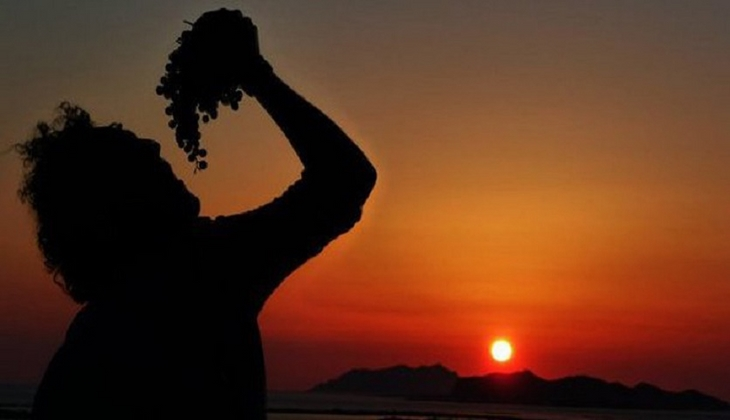 Cantine Marsala - Degustazione Vini Sicilia