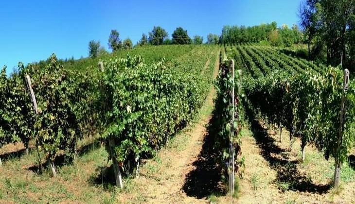 baglio siciliano - wine resort sicilia