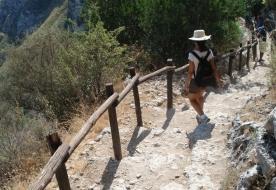 escursioni siracusa - visitare avola