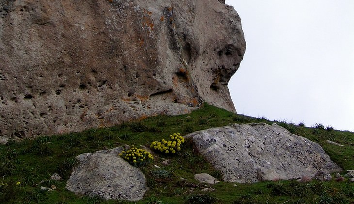 rocche dell'argimusco - bosco di malabotta