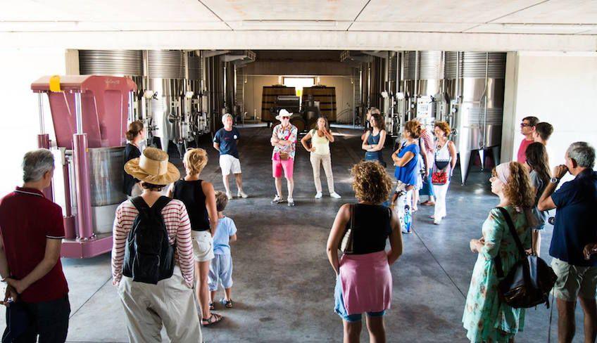 degustazione vini catania - tour enogastronomici sicilia