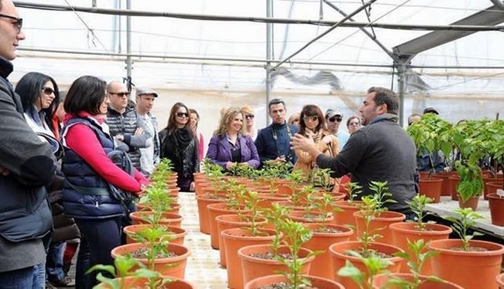 tour enogastronomici Sicilia - degustazioni Sicilia
