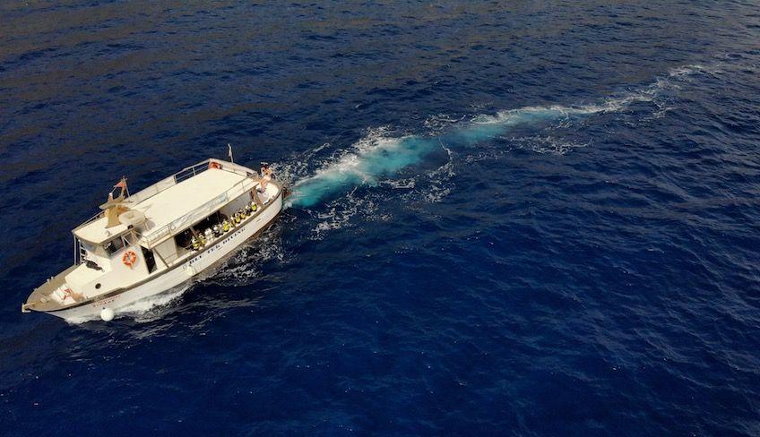 diving trapani - immersioni marettimo