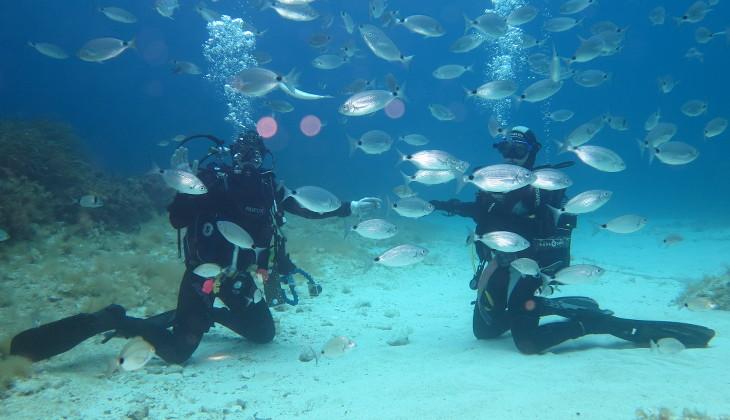 Scuba Diving Taormina