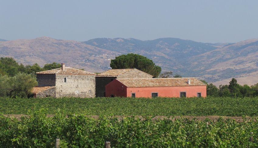 degustazione vini etna - degustazione vini sicilia
