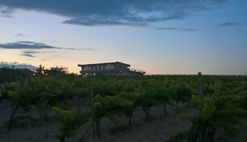 azienda agricola noto-degustazione vini noto-cosa fare a noto